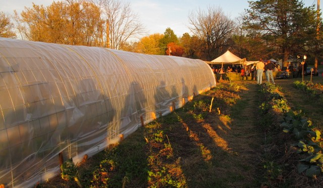 Urban Agriculture Task Force Hearing