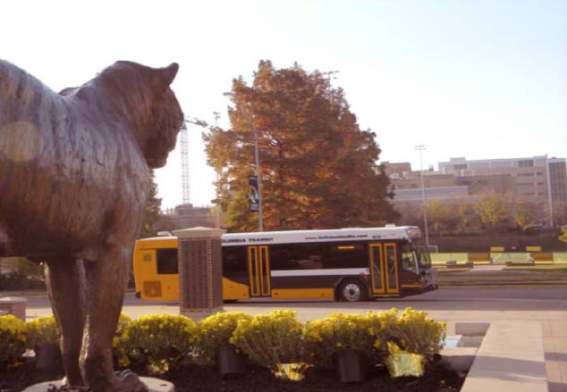 Tiger Transit Movement gains traction