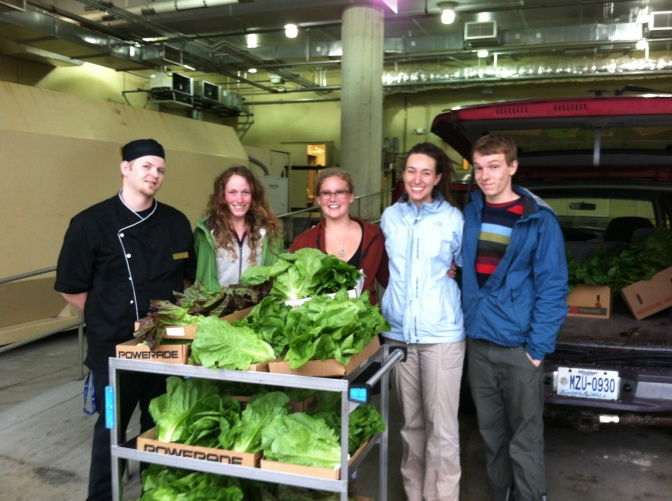 TCA has sold about 40 pounds of lettuce each week to CDS. They are pictured here with a sous chef in the loading dock of the Student Center.